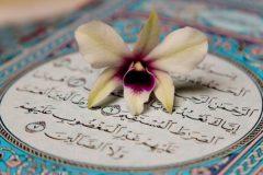 ضرورت شناسایی استعدادهای درخشان قرآنی در جامعه/ فعالیتهای قرآنی باید به سبک زندگی قرآنی ختم شود