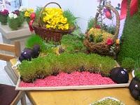 دهاقانیها میزبان فراخوان اولین جشن سبزه ها به مناسبت فرا رسیدن بهار طبیعت